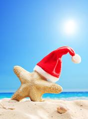 Santa hat on a starfish at a beach