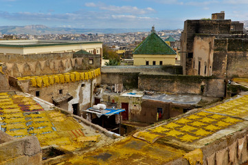 Yellow Sheep Leathers on Rooftops of Fes