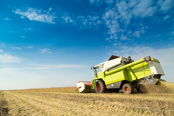 Combine harvester harvesting soybean at field