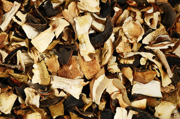 top view of mixed dried mushrooms