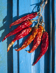 Chillies hang to dry on blue wooden background