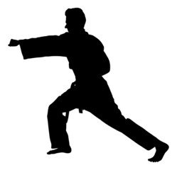Silhouette Man Exercising Martial Arts