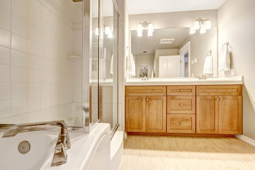 Bathroom interior with bath tub and shower
