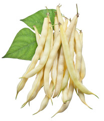 Yellow string beans isolated on a white background.
