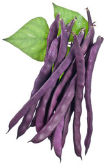 Violet string beans isolated on a white background.