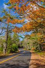 Winding autumn road in New England