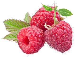 Three raspberry fruit isolated on a white.