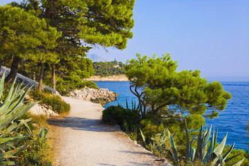 Pathway at Makarska, Croatia