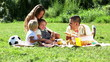family with picnic at countryside