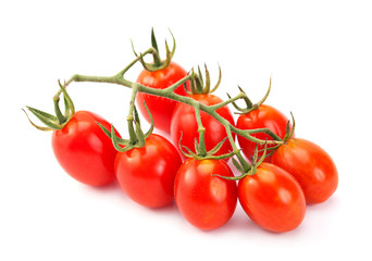 Cherry tomatoes branch