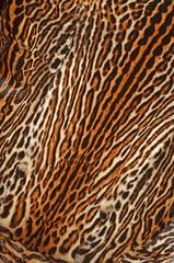 pelle di gattopardo americano