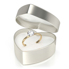 Case with ring