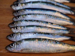 Fresh Adriatic sardines on wooden background