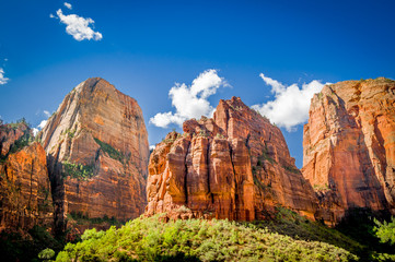 zion national park landscape