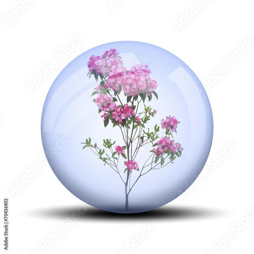 canvas print picture Fleurs rose dans bulle