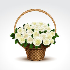 Basket of White Roses Isolated
