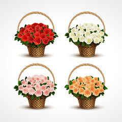 Set Baskets of Roses Isolated