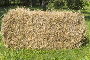 the bale of straw