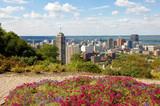 View of downtown Hamilton.