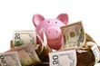 piggy bank standing on dollars - 70447265