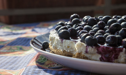 Close-up of a homemade blueberry cheesecake