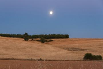 Luna Llena en Paisaje al Anochecer