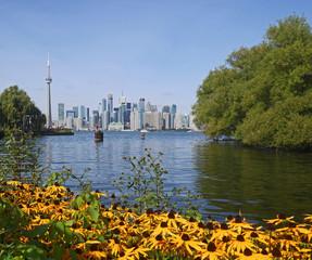 Toronto skyline and island park