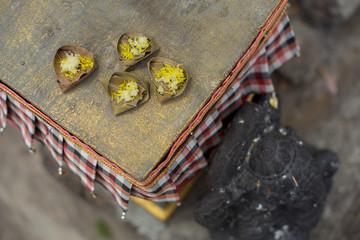 バリ / ガネーシャと小さいチャナン
