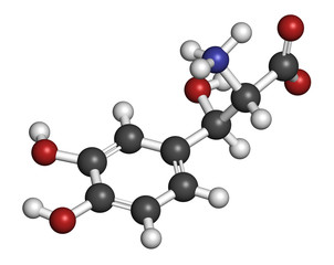 Droxidopa (L-DOPS) hypotension (low blood pressure) drug