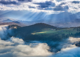 Foggy summer morning in the mountains