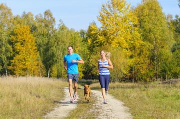Freizeitsport mit Hund