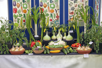 Assortment of vegetables on display at show