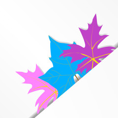 three  abstract maple leaves