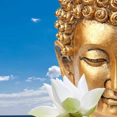 bouddha zen et fleur de lotus