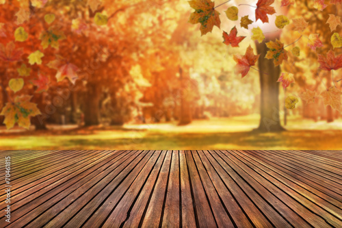 Deurstickers Bomen autumn background