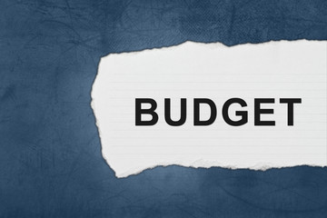 budget with white paper tears