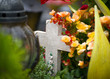 Friedhof - 70464629