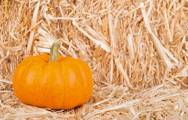 Pumpkin on Straw Bale