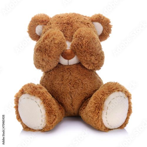 Teddy bear - 70465438