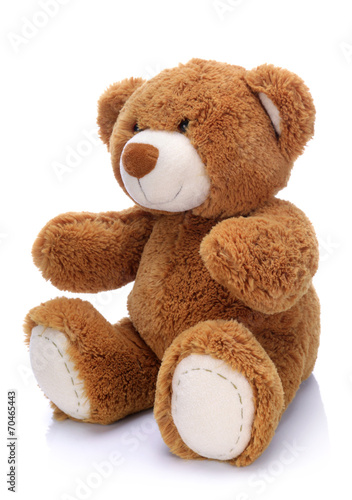 Sweet teddy bear on a white background - 70465443