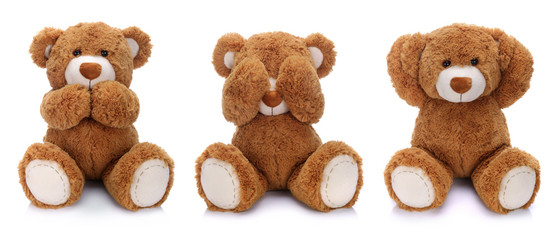 Three teddy bears on white background
