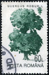stamp printed in Romania shows Common Oak