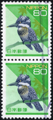 stamp printed in the Japan shows Pied Kingfisher,