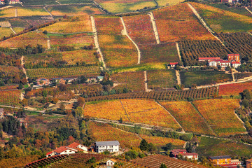 Autumnal hills and vineyards in Piedmont, Italy.