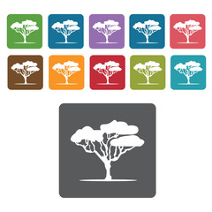 Africa Tree icon. African culture icons set. Rectangle colourful