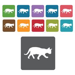 Cat silhouette icon. Cat icon set. Rectangle colourful 12 button