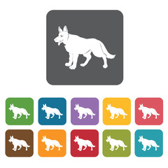 German sheperd icon. Dog icons set. Rectangle colourful 12 butto