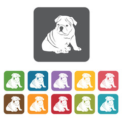 Bulldog icon. Dog icons set. Rectangle colourful 12 buttons. Vec
