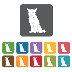 Husky icon. Dog icons set. Rectangle colourful 12 buttons. Vecto