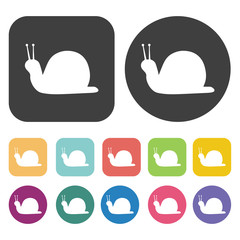 Snail icon. Farming icon set. Round and rectangle colourful 12 b